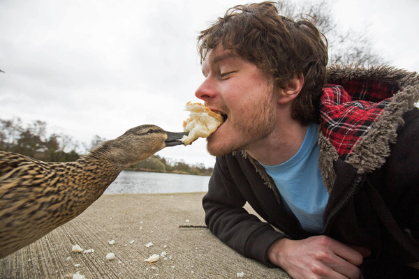 PIC BY @DAXON / CATERS NEWS - (PICTURED: Allan Dixon takes selfie with duck) This real-life Dr. Dolittle walks with the animals, talks with the animals, and... TAKES SELFIES with them. Traveller Allan Dixon has amassed a hilarious collection of shots with a variety of exotic creatures. Included in the 29-year-olds collection are smiling snaps with the likes of kangaroos, quokkas, camels and sea lions. In some of the shots, Allan, who is originally from Wicklow, Ireland, can even be seen in festive poses, placing a Santa hat on himself or his furry friends. - SEE CATERS COPY