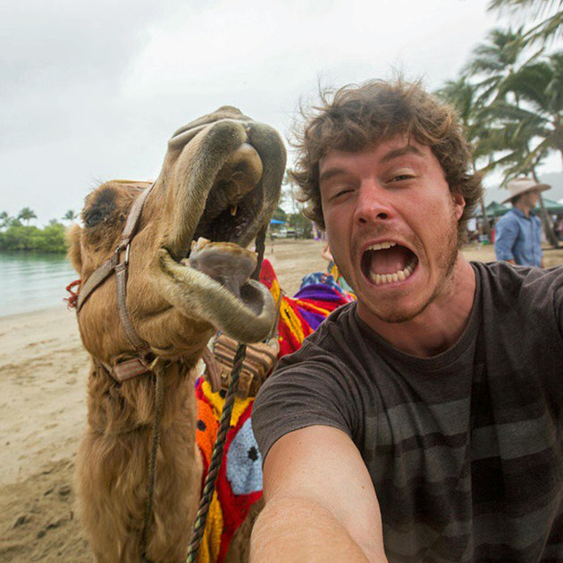 PIC BY @DAXON / CATERS NEWS - (PICTURED: Allan Dixon takes selfie with camel) This real-life Dr. Dolittle walks with the animals, talks with the animals, and... TAKES SELFIES with them. Traveller Allan Dixon has amassed a hilarious collection of shots with a variety of exotic creatures. Included in the 29-year-olds collection are smiling snaps with the likes of kangaroos, quokkas, camels and sea lions. In some of the shots, Allan, who is originally from Wicklow, Ireland, can even be seen in festive poses, placing a Santa hat on himself or his furry friends. - SEE CATERS COPY