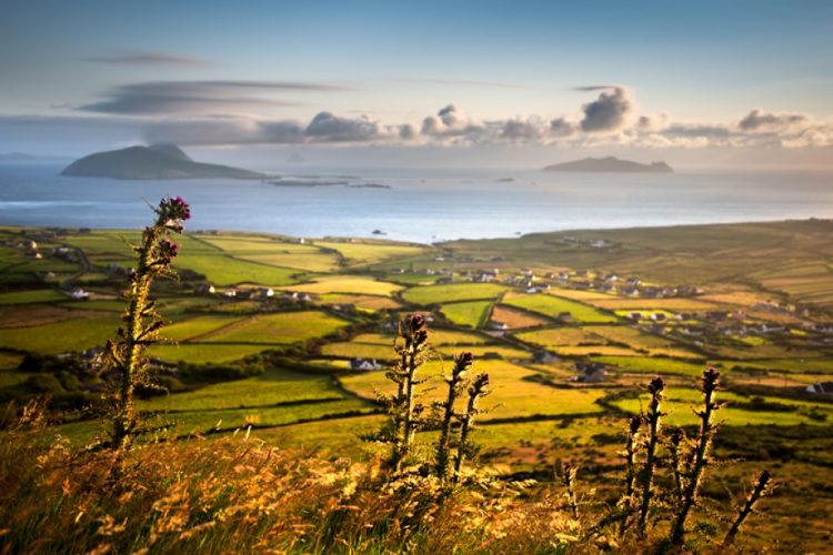 AD-Heres-Why-You-Definitelt-Need-To-Visit-Ireland-06