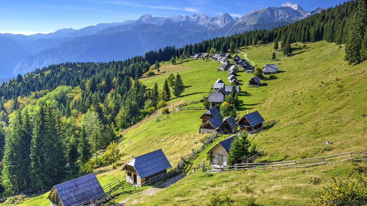 Planina Zajamniki Alpine Meadow