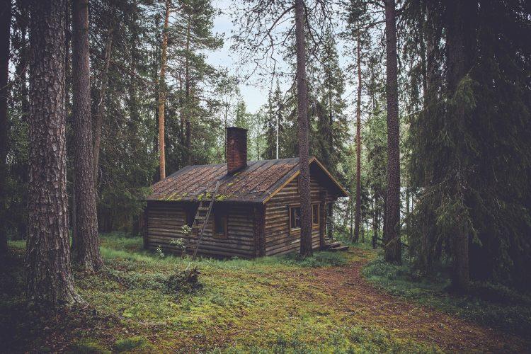 cabin-1081733_1920