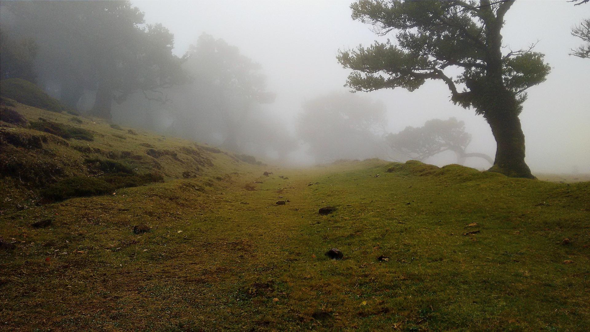 hill-801958_1920