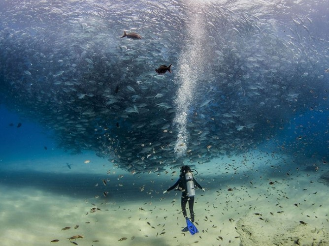 national-geographic-2015-20